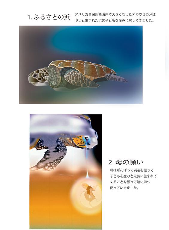 『アカウミガメの物語』画像01