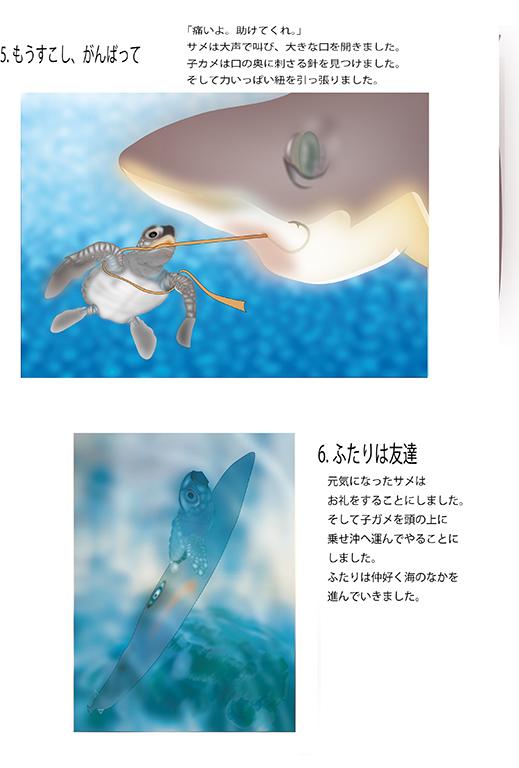 『アカウミガメの物語』画像03