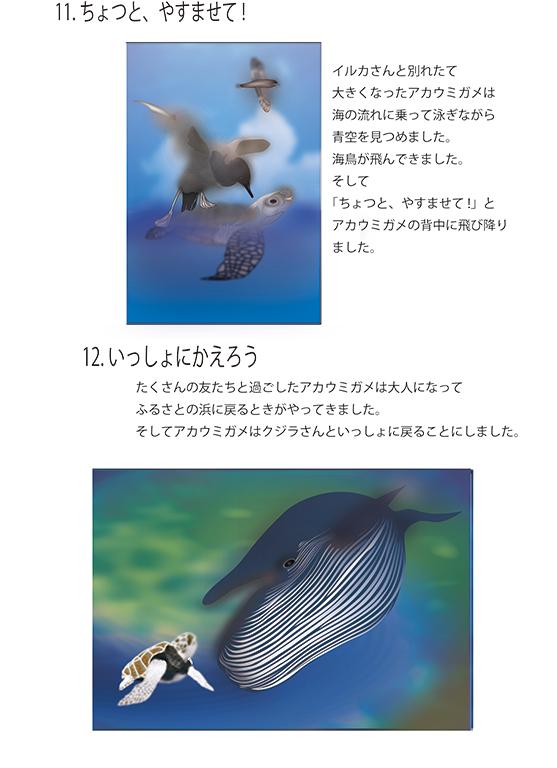 『アカウミガメの物語』画像06